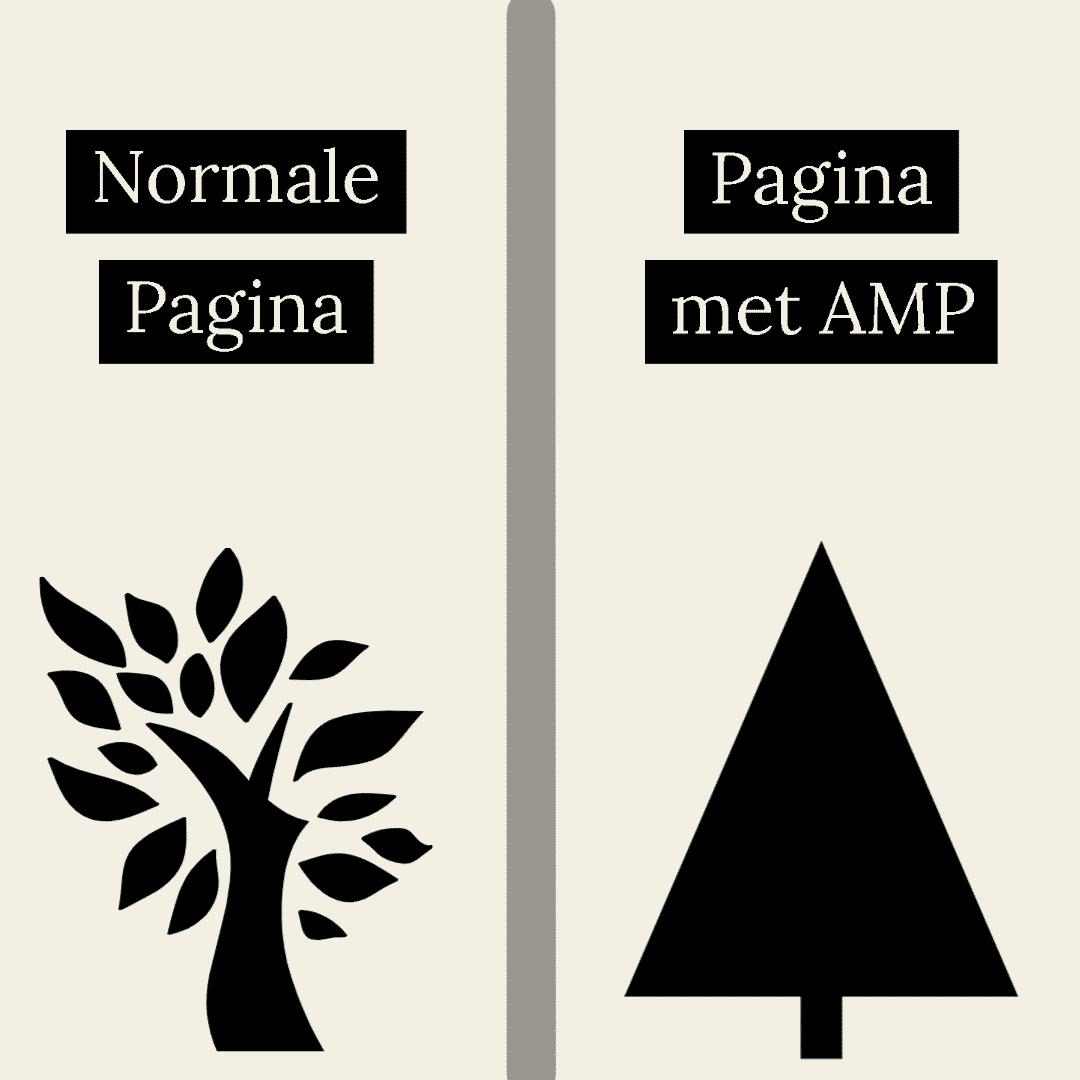 AMP infogram